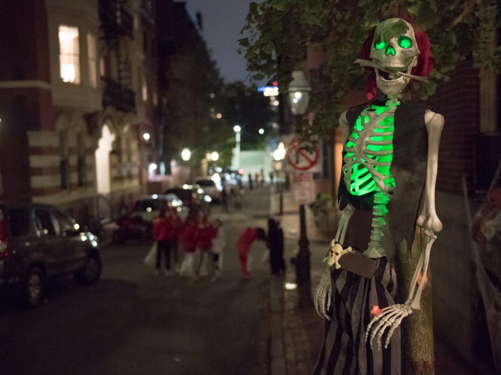 Skeleton hanging in dark