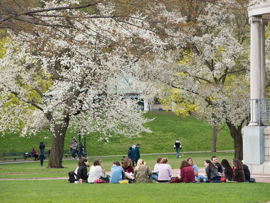 students sitting under trees