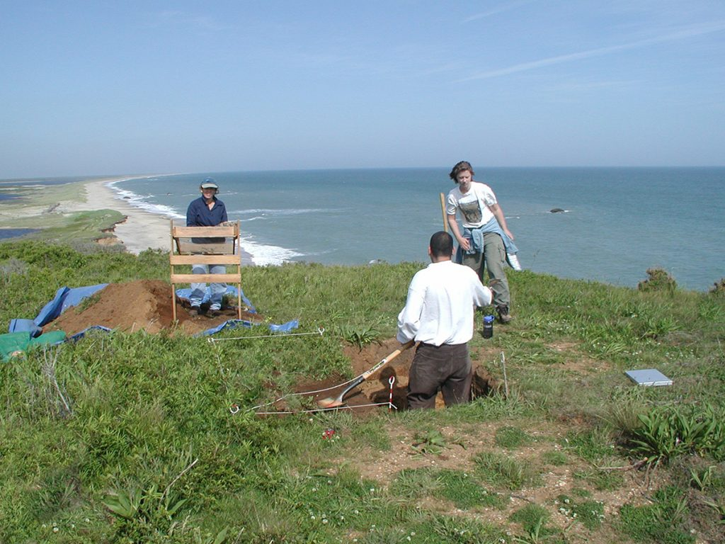 three people digging along coast