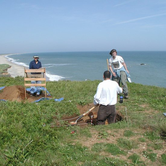 three people digging along coast