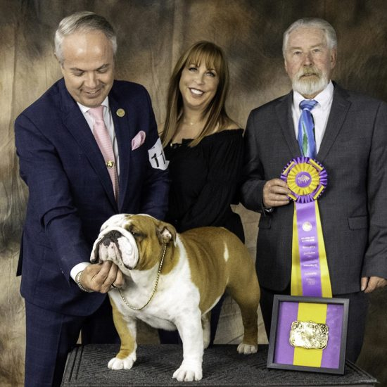 Thor the dog with his handler Eduardo Paris, Kara Gordon, and judge William Gray, after Thor won Best in Specialty Show in Oklahoma City.