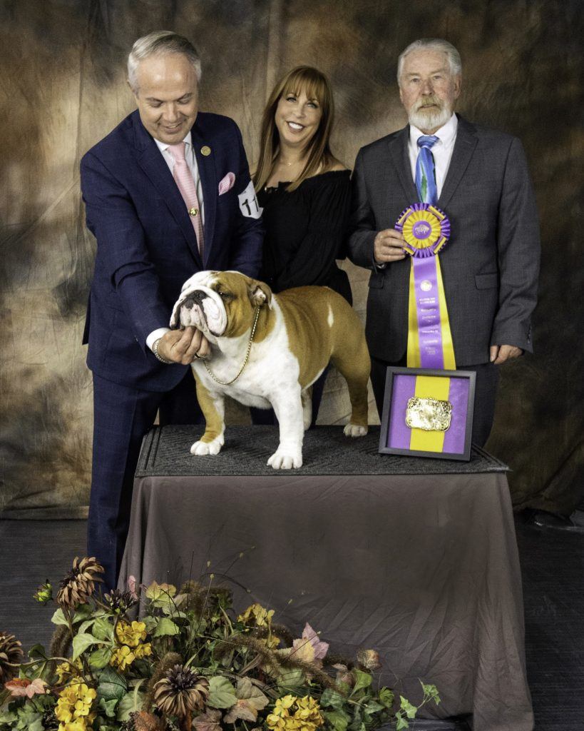 Thor with his handler Eduardo Paris, Kara Gordon, and judge William Gray, after Thor won Best in Specialty Show in Oklahoma City.