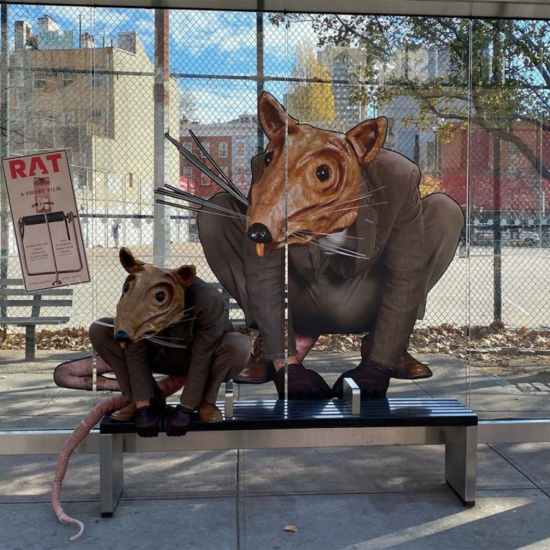 A man dressed up as a rat sits at a bus stop with a drawing of the rate behind him on the glass