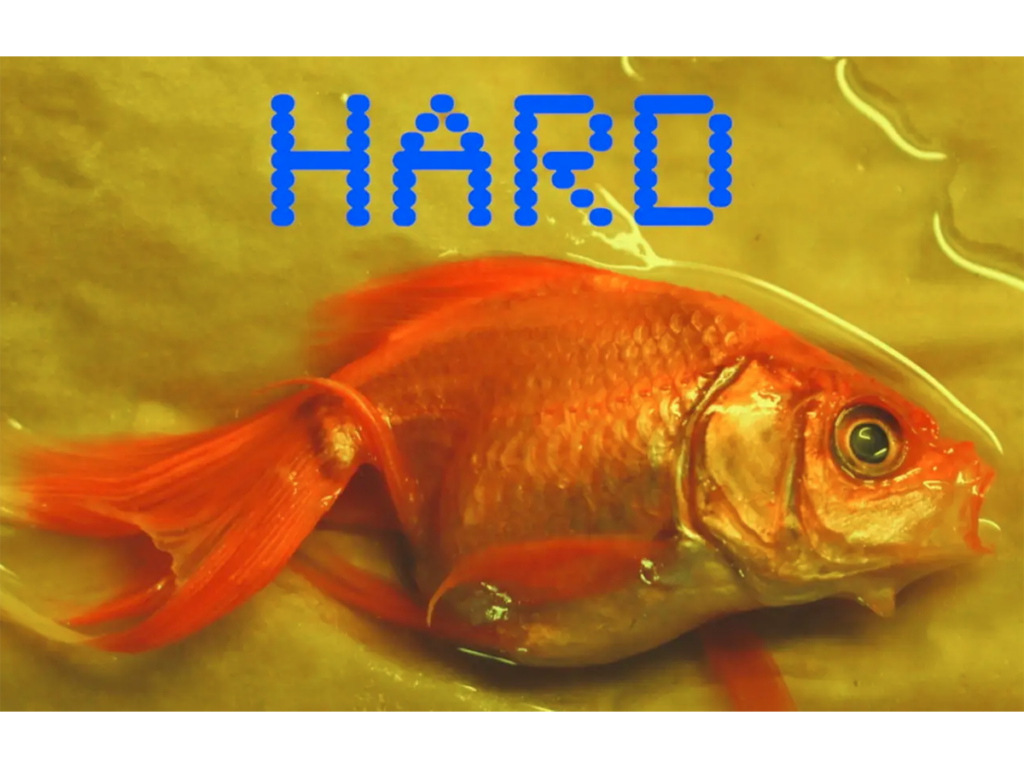 A fish out of water on a yellow background with the word hard written about it.